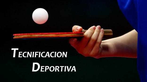 PROGRAMA DE TECNIFICACIÓN FTMCLM